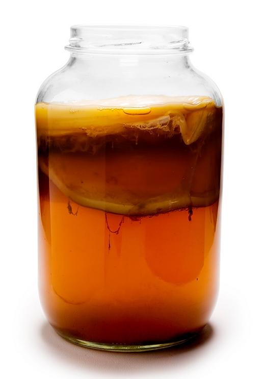 Kombucha Tea Amount To Drink