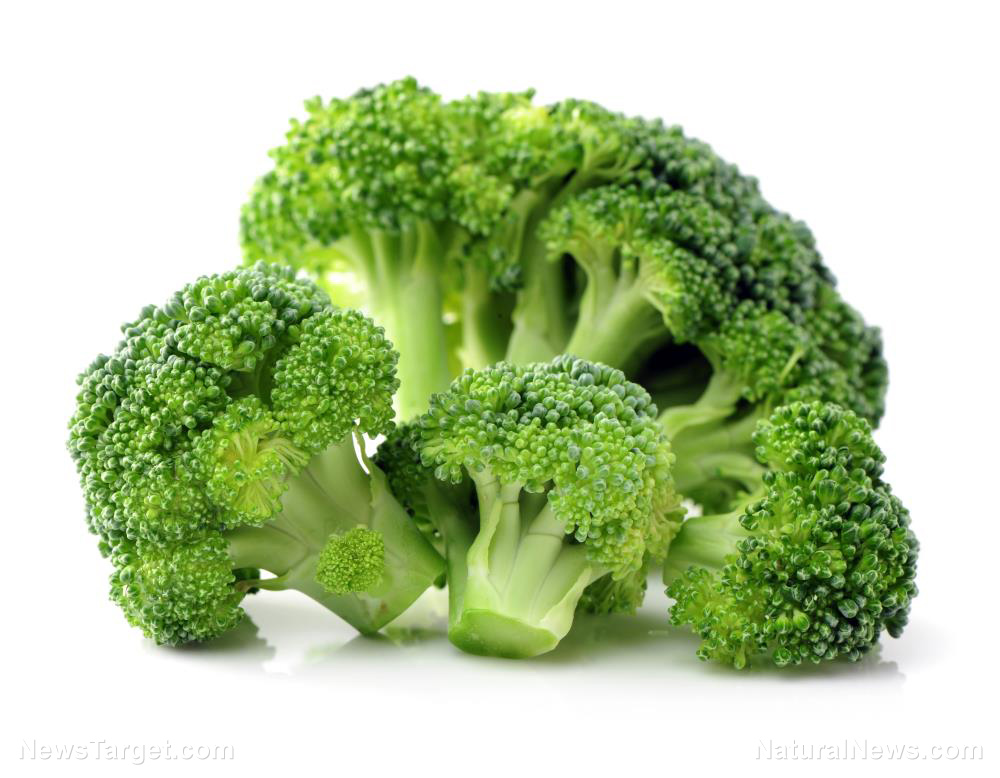 New Study Confirms Broccoli To Be Extremely Effective At